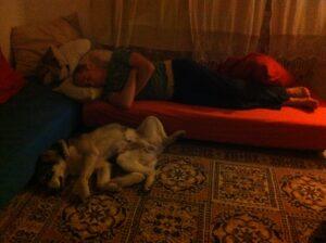 ישנים יחד